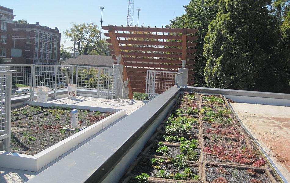 Civic Garden Center plants