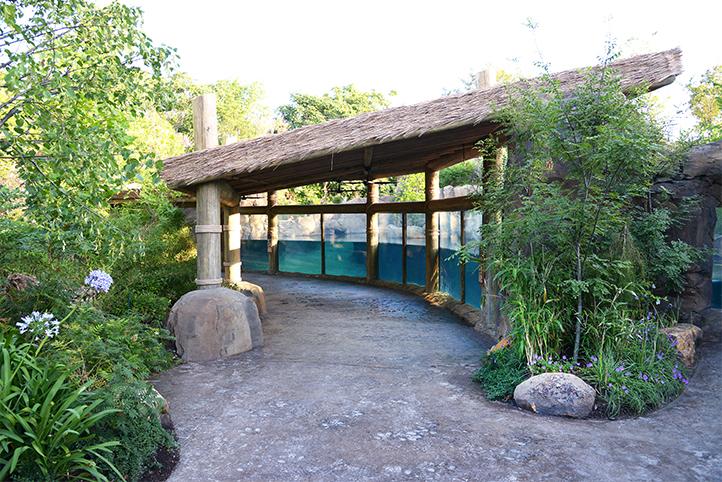 Cincinnati Zoo Hippo Cove viewing area