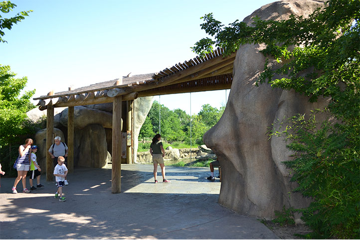 Cincinnati Zoo African Safari viewing area