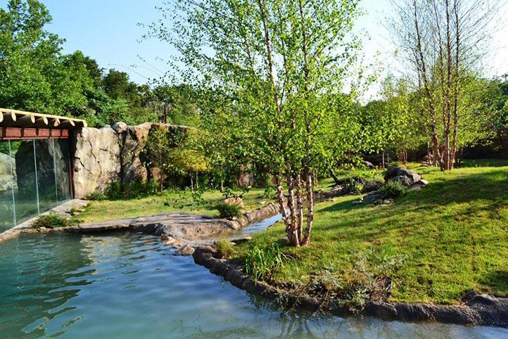 Cincinnati Zoo African Safari landscape