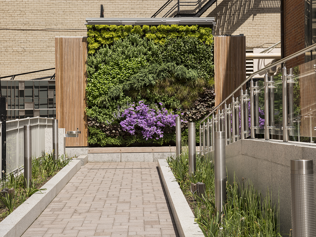 Living Wall at Christ Church Cathedral