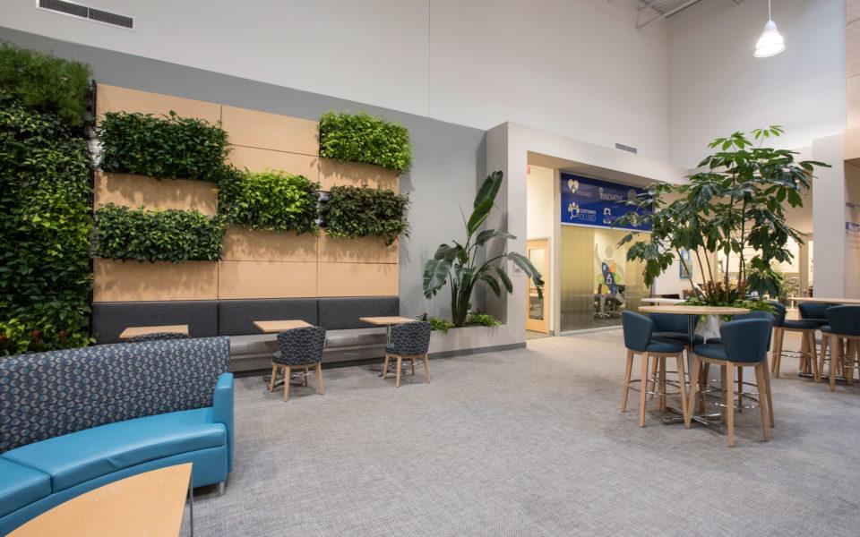 SentriLock Lobby Plants