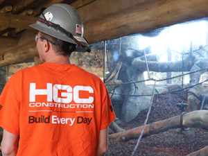 """A construction worker stands in front of a large glass wall reveals a habitat for gorillas. A wide variety of artificial trees and vines are surrounded by a dirt and mulch ground mixture. The viewing area in the foreground has a ceiling of log beams. The worker is wearing a bright orange t-shirt with the HGC logo in white, and """"Build Every Day"""" written below. The worker also wears a gray hard hat with an American flag sticker on the back."""
