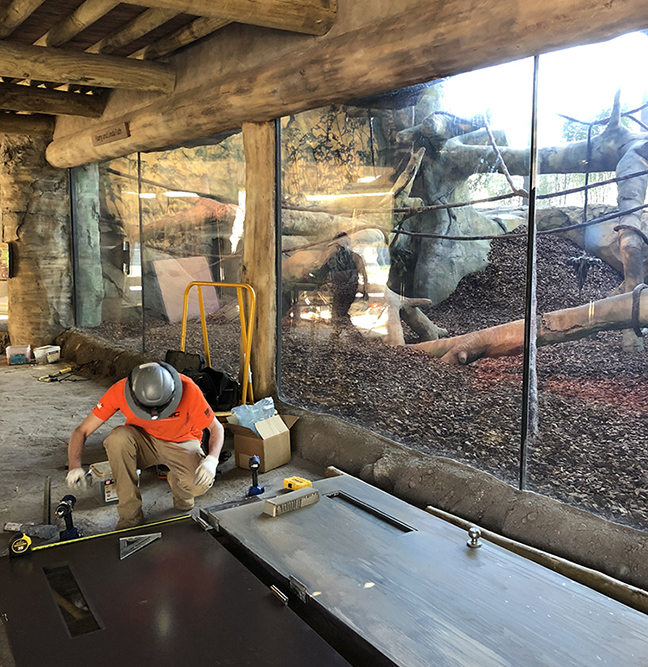 A construction worker crouches on the floor, putting the final touches on an interior zoological display. The worker wears work boots, khakis, a bright orange t-shirt, and a gray hard hat with a head lamp on it. A large glass wall reveals a habitat for gorillas. A wide variety of artificial trees and fines are surrounded by a dirt and mulch ground mixture. The viewing area in the foreground has a cement floor made to simulate rock, and a ceiling of log beams.
