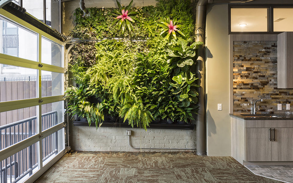 Interior of Crane Factory Flats living wall