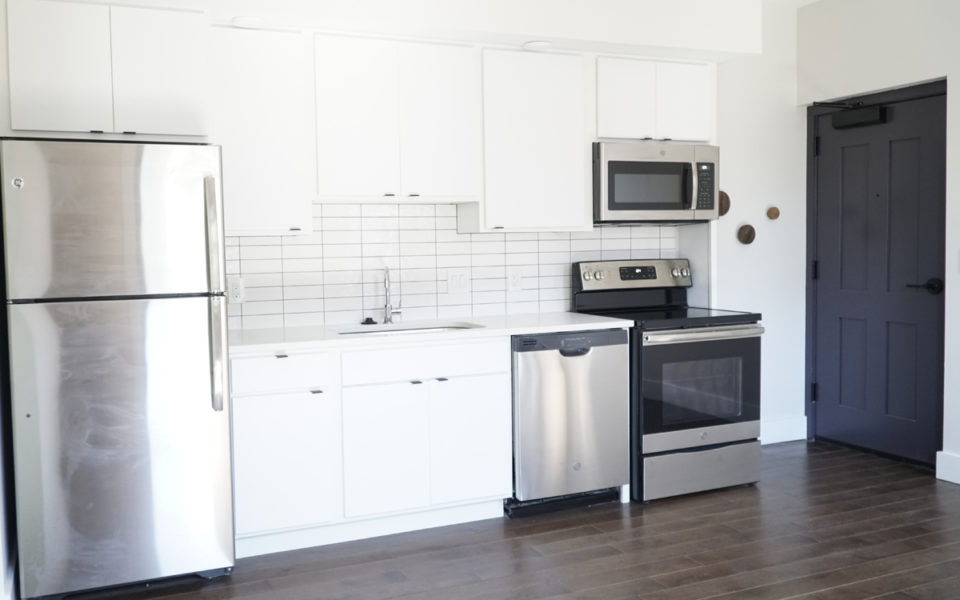 modern kitchen unit in Columbia Flats